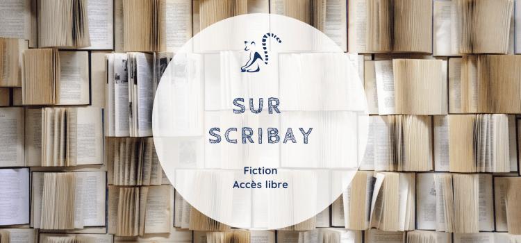 Mes Fictions sur Scribay