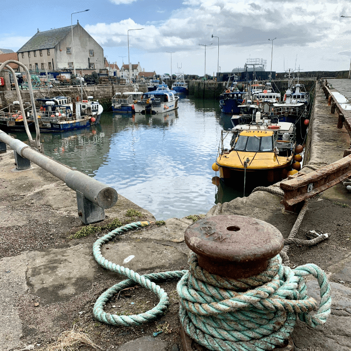 things to do in pittenweem
