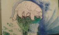 160205 tardigrade