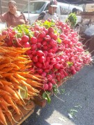 Beautiful carrots and radishes