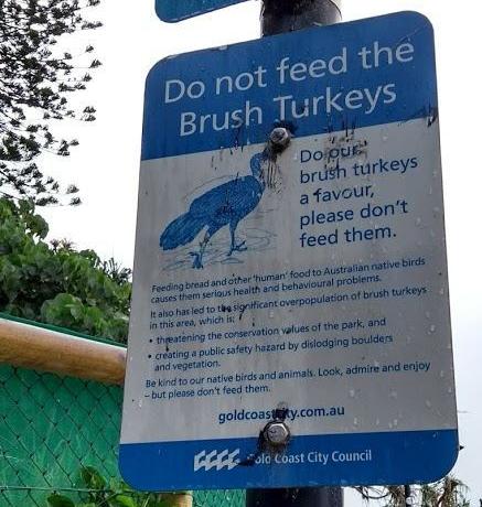 Cartello di divieto di nutrire i tacchini di boscaglia australiani