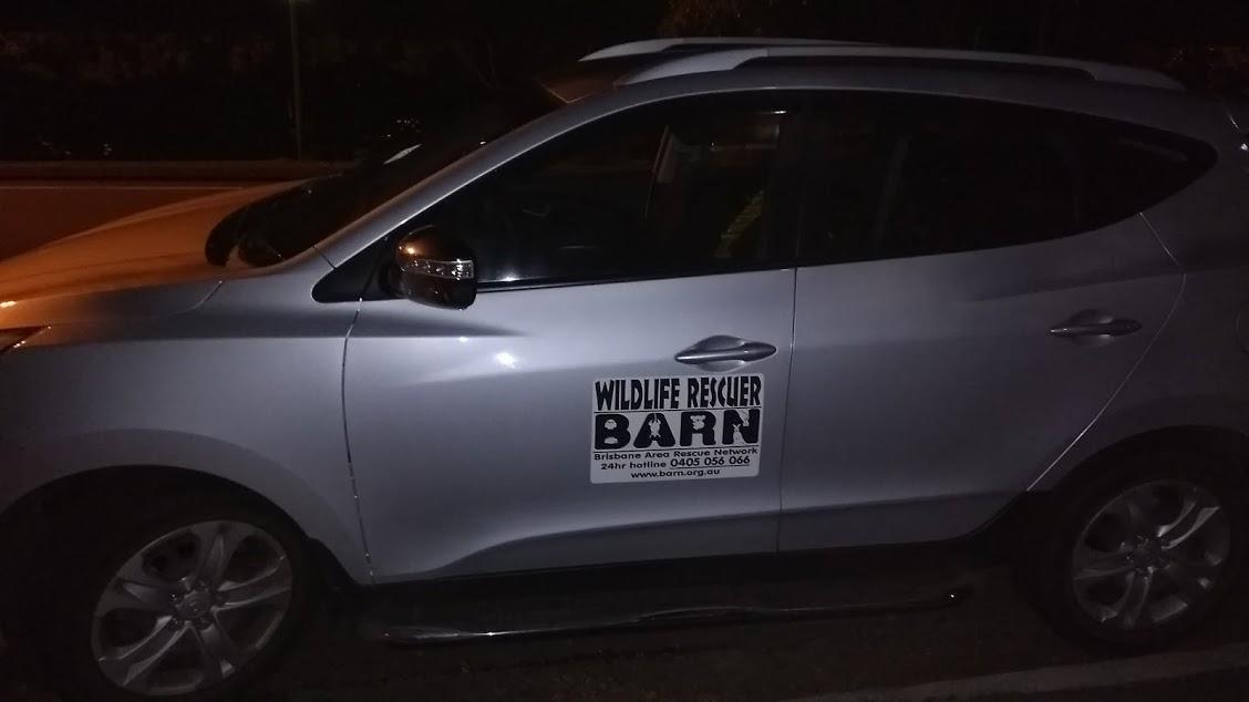 Auto di salvataggio per fauna selvatica wildlife rescuer