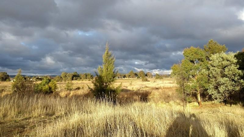 Canberra vegetazione con cielo plumbeo