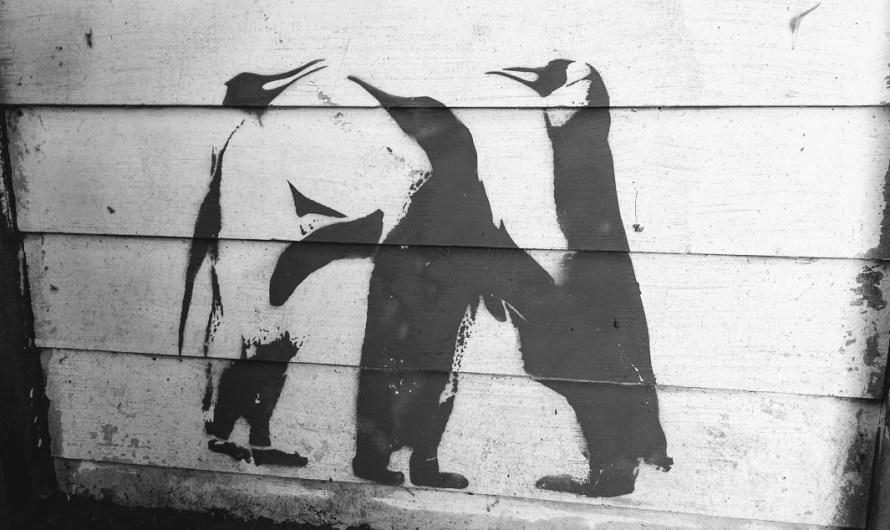 pinguini disegnati su legno