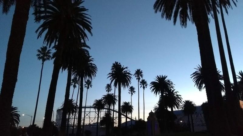 palme dopo il tramonto con montagne russe di st kilda