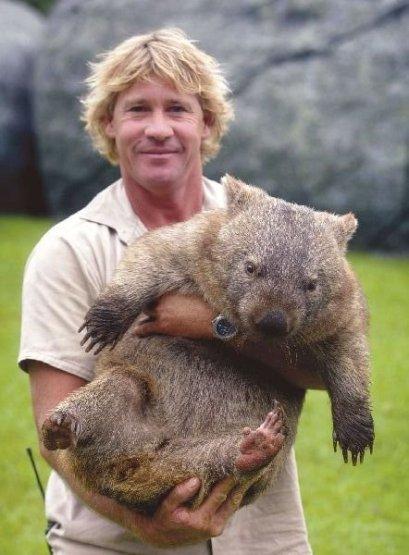 Steve Irwin con un vombato in braccio