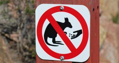 cartello con divieto di nutrire canguri e wallaby