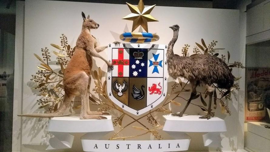 australia stemma ufficiale con canguro, emù e mimosa