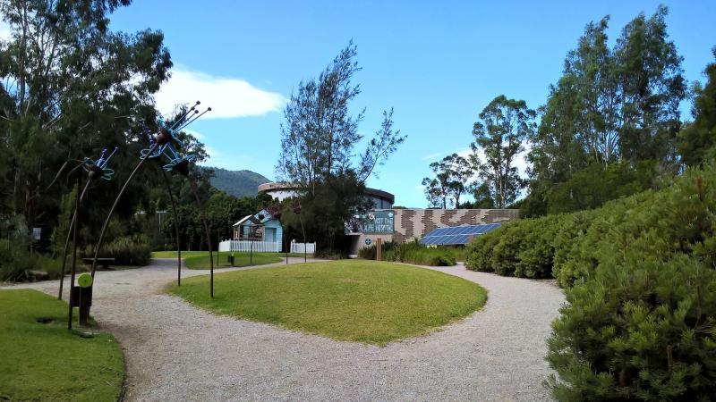 ospedale per animali selvatici di healesville, australia