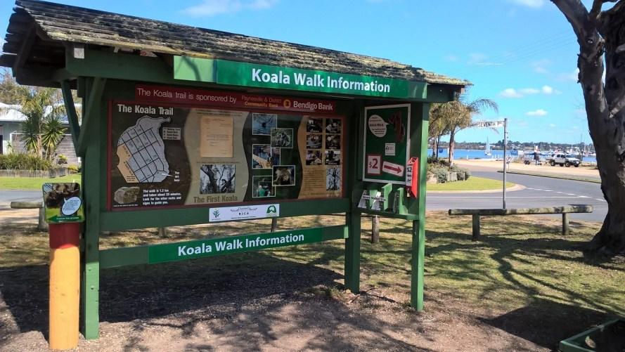 pannello informativo sui koala raymond island