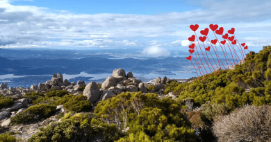 Hobart, Tasmania: panorama dal Monte Wellington con cuori