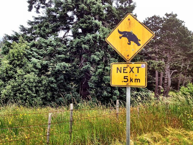 attraversamento ornitorinchi, cartello stradale australiano