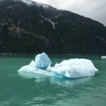 How to get up close to the sawyer glacier in Alaska - Lucy Williams Global