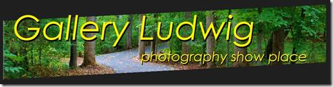 GalleryLudwig-blog header