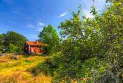 tjaro-sunny-side-of-sweden