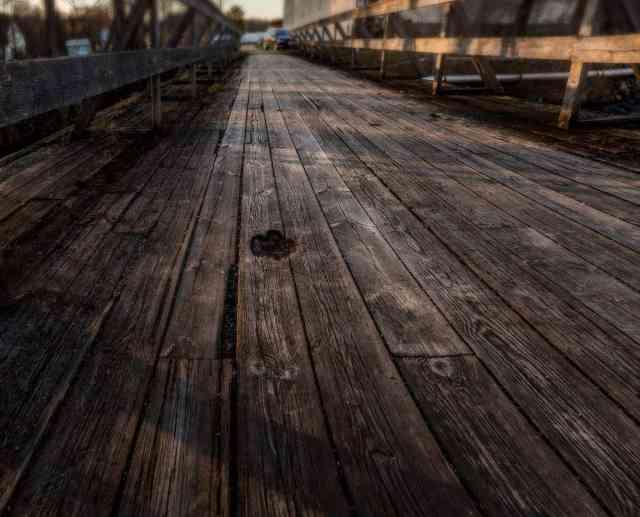 Fridafors Pappersbruk - Avtrycket i bron liknar ett tassavtryck - Ludwig Sörmlind
