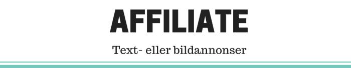 Tjäna pengar på din blogg med affiliatelänkar - Ludwig Sörmlind