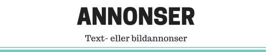 Tjäna pengar på din blogg - annonser text eller bild - Ludwig Sörmlind