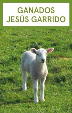 jesus garrido (Large)