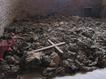 Rwanda Genocide - Home