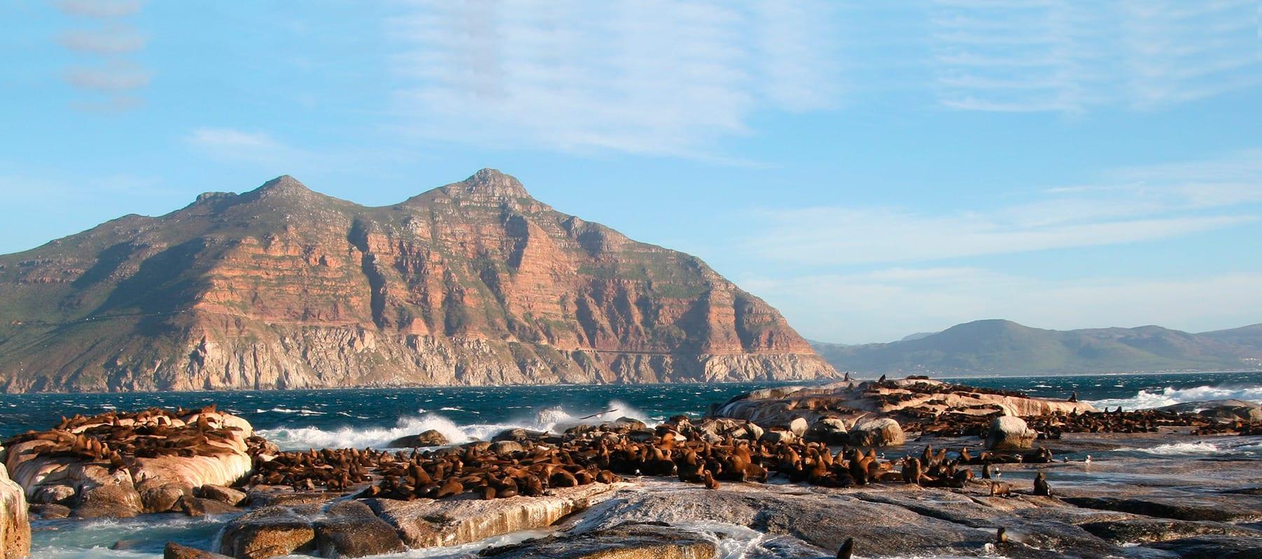 9 Dicas imperdíveis do que fazer na Cidade do Cabo