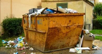 Lugoj Expres La Lugoj începe campania de curățenie de toamnă! salubrizare Salprest curățenie curățenia de toamnă campanie