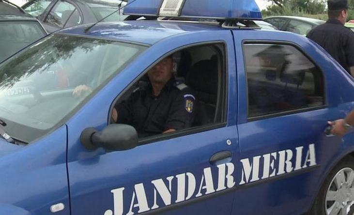 Lugoj Expres Jandarmi luați la întrebări de un șofer cu tupeu, dar fără permis tupeu șofer jandarmi fără permis dosar penal cascadorii râsului