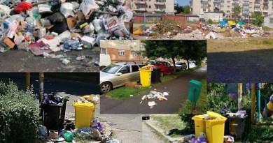 Lugoj Expres Campanie de voluntariat pentru strângerea gunoaielor din Lugoj voluntariat Lugoj voluntariat strângerea gunoaielor primăria lugoj Lugoj gunoaie Lugoj deșeuri curățenie campanie Lugoj campanie