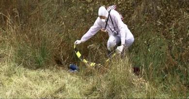 Lugoj Expres Femeie cercetată pentru profanare de cadavre. Și-a abandonat mama moartă în pădure profanare Polițiști pădure femeie decedată cercetată penal cadavru abandonată