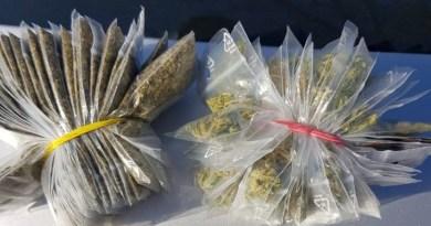 Lugoj Expres Tânăr de 19 ani, prins cu 69 de pliculețe cu droguri tnăr substanțe interzise Lugoj jandarmi infracțiune droguri