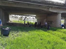 Lugoj Expres Malul Timișului, igienizat de un grup de tineri voluntari voluntari USR Lugoj tineri strâns gunoiul malulTimișului igienizat gunoi acțiune