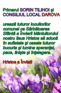 Lugoj Expres 9 darova 2
