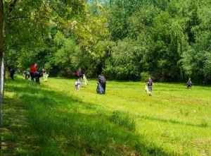 Lugoj Expres ecologizare 10