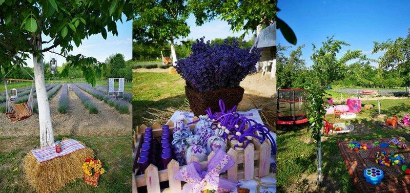 Lugoj Expres De Rusalii, la Sălbăgel: Picnic la buni în lavandă surprize Sălbăgel săculeți parfumați Picnic la buni în lavandă picnic lavandă hamace Găvojdia de Rusalii Atelierul de creații