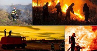 Lugoj Expres Peste 50 de incendii de vegetație uscată. Au fost afectate peste 130 de hectare de miriște și culturi agricole vegetație uscată pagube miriște ISU Timiș incendii culturi agricole