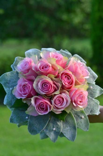 Roosade roosidega pruudikimp