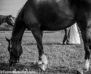 matrimonio_tenuta-la-staffa-caprino-bergamasco-fotorotastudio (23)