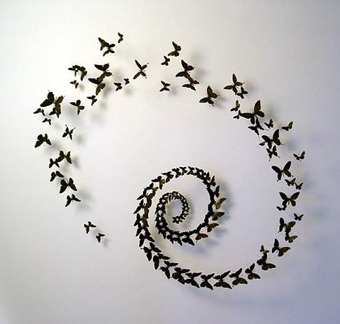 butterfly,spiral,pattern,art,butterfies-677c5140e8daecafcf56c8c16fdc86de_h