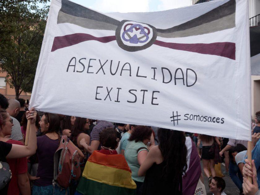 Pancarta: ASEXUALIDAD EXISTE. Manifestación del Orgullo Crítico en Madrid. Fotografía de Luis F. Roncero.