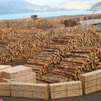Tariff's, Blacklisting, and Global Warming – Canada's Self-Inflicted Challenges on their Wood Industry