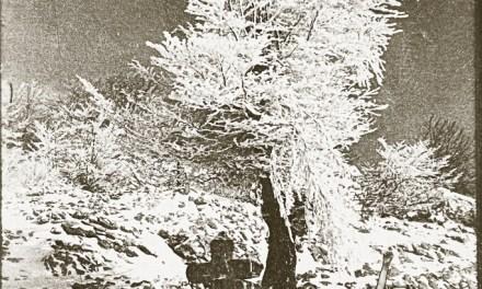 Día 46 – Emulsión de nieve