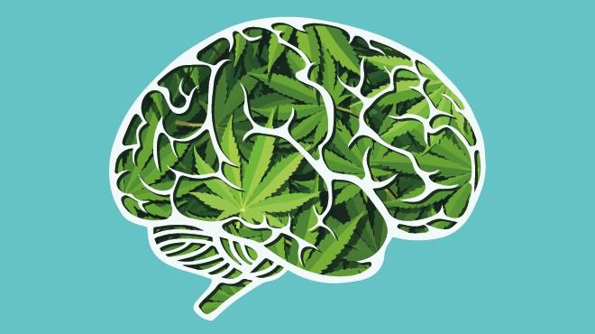 cannabis cambia cerebro efectos dejar de fumar