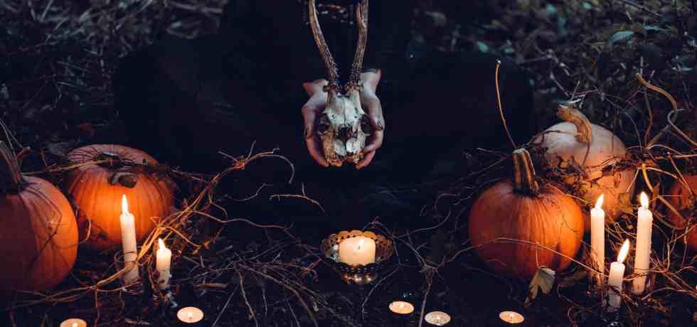 ▷ La bestia que creía muerta, aniquilada y enterrada 14