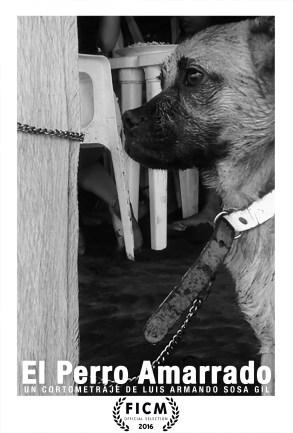 El Perro Amarrado de Luis Armando Sosa Gil FICM