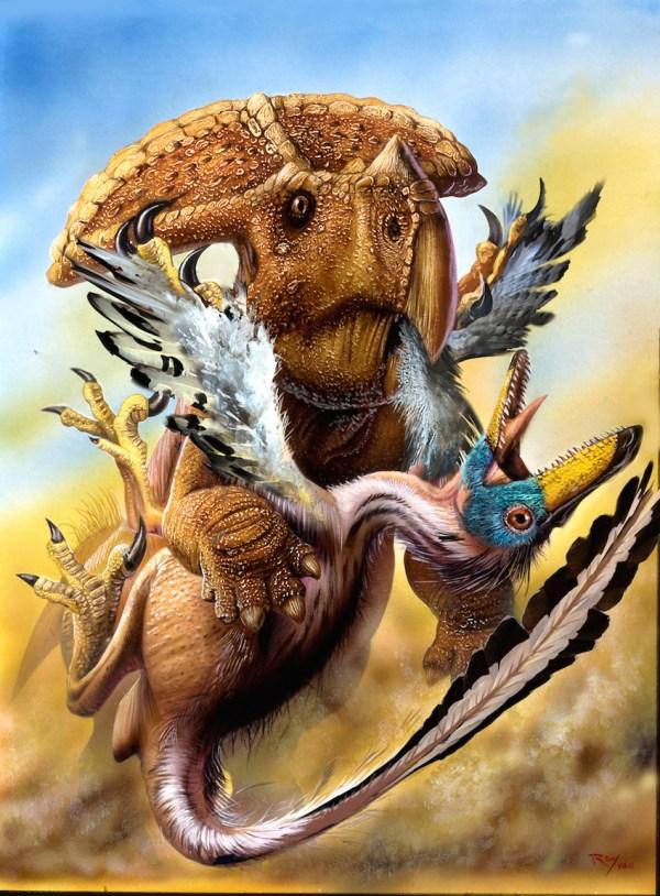 Dinosaurs Velociraptor vs Raptor