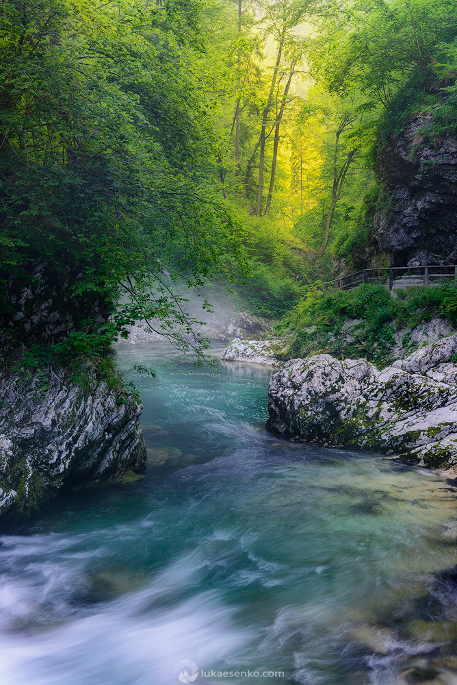 Radovna river at Vintgar gorge