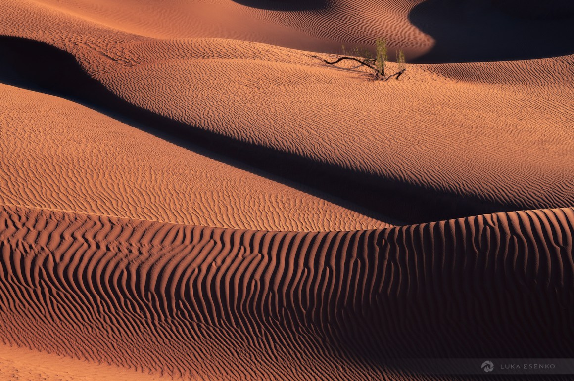 Sand dunes at Rub al Khali, Oman
