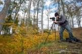 im Herbstwind (Foto: Jean-Marc Parries)
