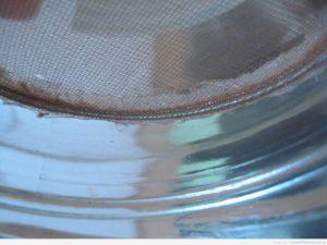 Zamontowana w pustym słoiku wkładka - kiełkownica słoikowa DIY