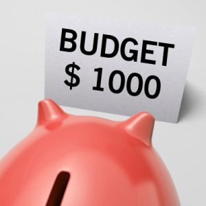 $1000 Budget Pig
